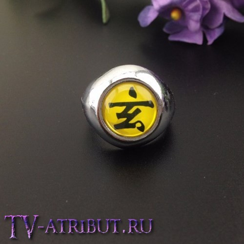 Кольцо Дзэцу с иероглифом Черной Черепахи