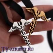 Медальон Шани (цвета - бронза, серебро)
